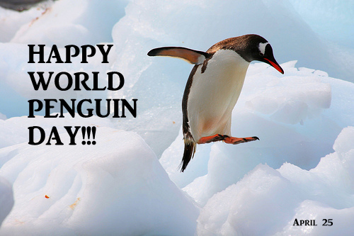 World pinguin day