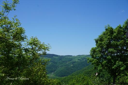 Panorama collina